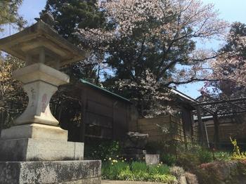 daizenjiIMG_2837.JPG